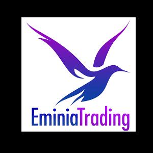 Eminia Trading GMBH CEO